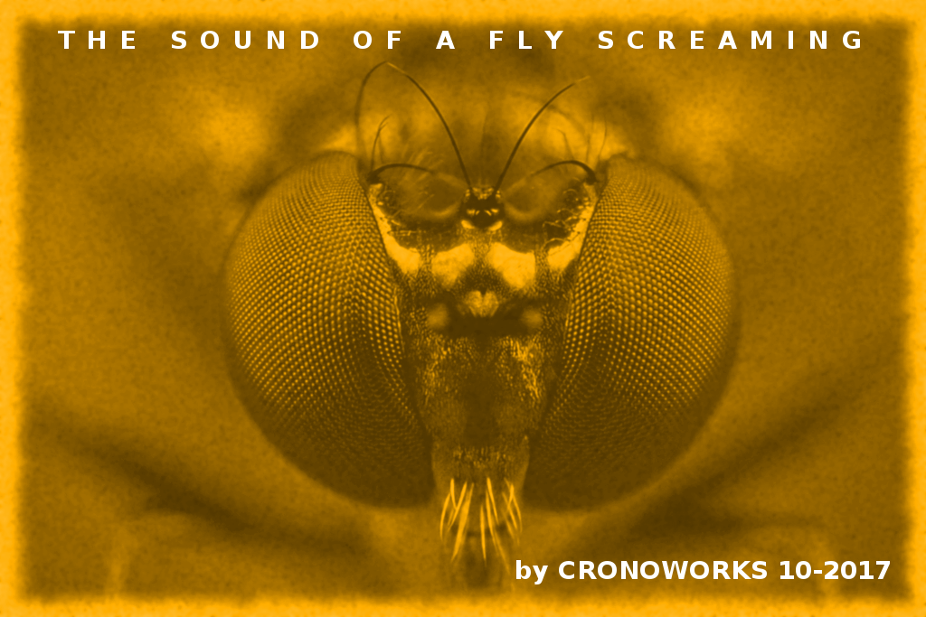 Album Art: The Sound Of A Fly Screaming